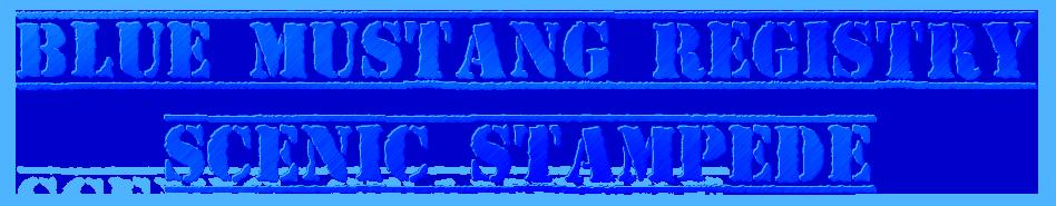 Blue Mustang Registry –  Scenic Stampede